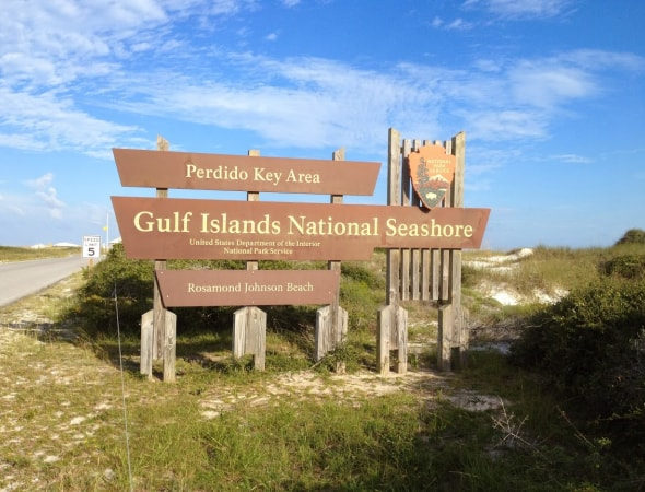 On Any Given Day In The Summer There Are Visitors Enjoying Sun Sand And Water At Johnson Beach Perdido Key Many Of Those Don T Know